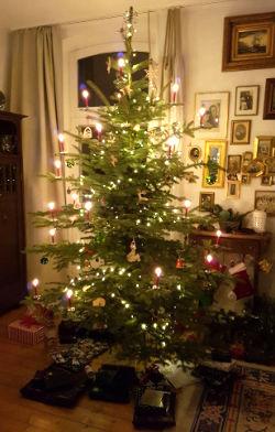 Zahnarzt Rheinbach Notdienst Weihnachten
